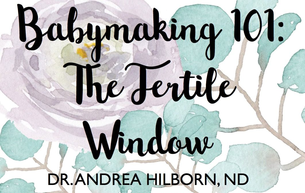 Babymaking 101: The Fertile Window